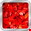 Sült paprika